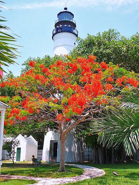 key west real estate florida visa business groupkey west homes for sale